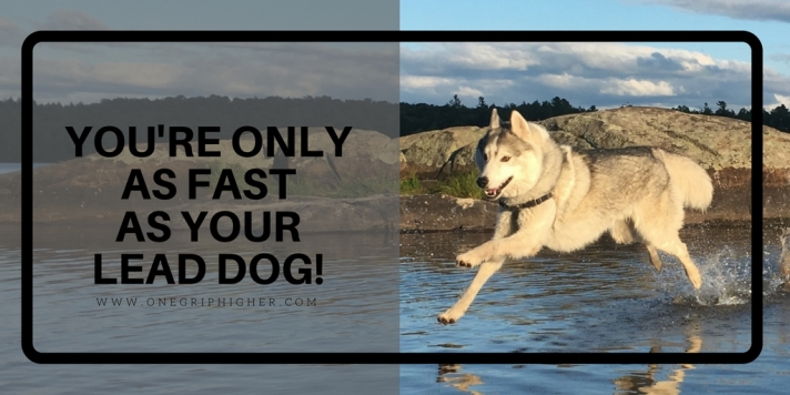 We're OnlyAs Fast as Our Lead Dog!.jpg